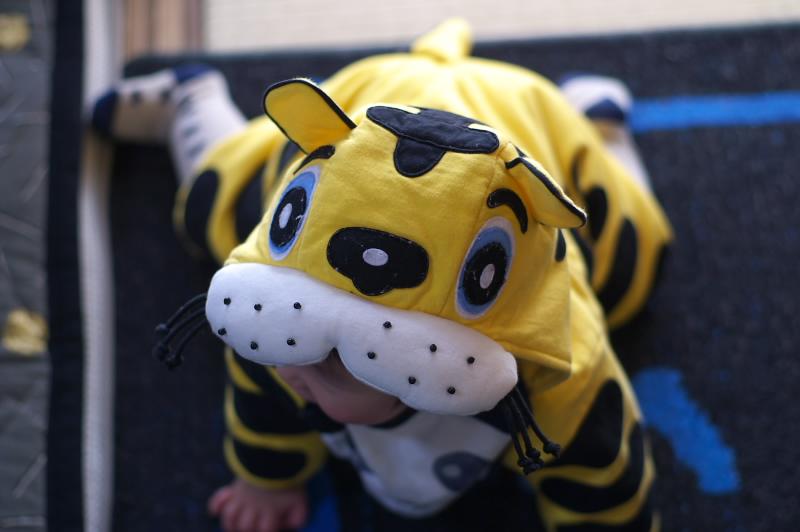 虎になった